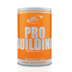 PRO-BILDING_2